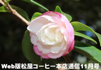 Web版松屋コーヒー本店通信11月号